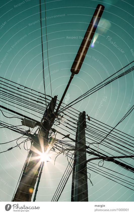Stromkabel und Leitungen auf Masten, Vögel und eine Straßenlaterne Kabel Technik & Technologie Fortschritt Zukunft Telekommunikation Informationstechnologie