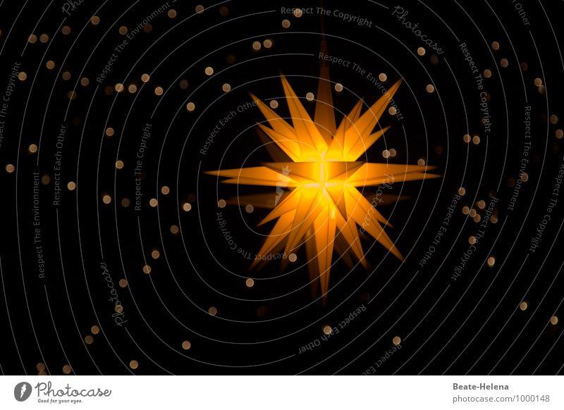 Lichterhimmel harmonisch Erholung Häusliches Leben Feste & Feiern Weihnachten & Advent Kunstwerk Winter Zeichen Stern (Symbol) berühren leuchten außergewöhnlich