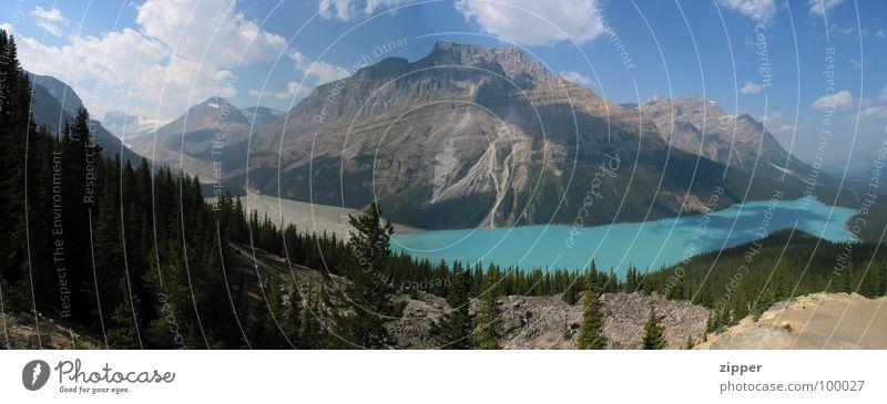 Peyto Lake Kanada Ferien & Urlaub & Reisen See Panorama (Aussicht) Gletscher Icefields Parkway Berge u. Gebirge Rocky Mountains groß Panorama (Bildformat)