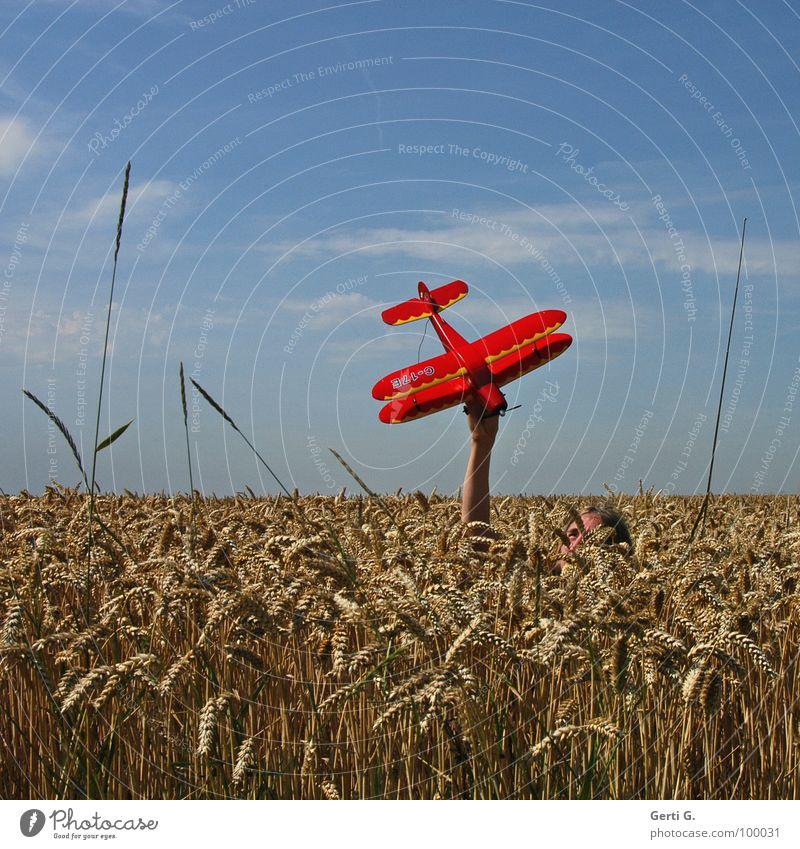 Flieger, grüß mir die Sonne Modellflugzeug Kornfeld rot Hand verdeckt unsichtbar Tarnung Fluggerät Propeller Oberkörper Weizen niedlich Weizenfeld Gras tauchen