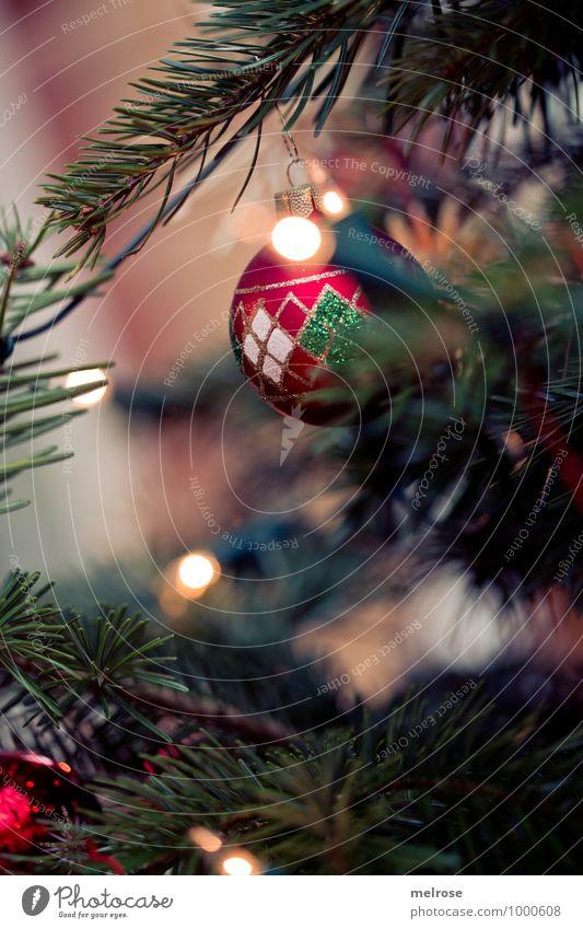 stimmungsvoll Weihnachten & Advent grün schön Baum Erholung rot ruhig Winter Feste & Feiern braun Stimmung glänzend leuchten Dekoration & Verzierung elegant