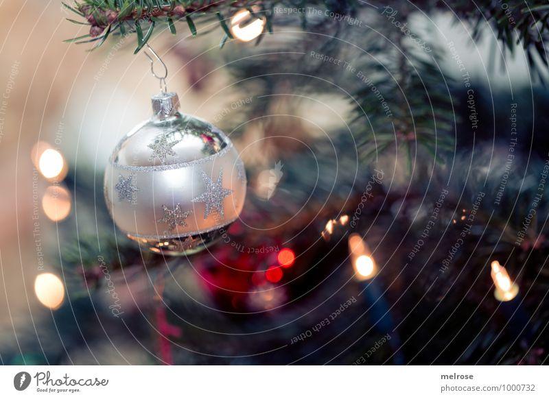 Weihnachtsbaum Weihnachten & Advent grün schön rot ruhig Feste & Feiern Stimmung glänzend leuchten Dekoration & Verzierung elegant gold Hoffnung Kunststoff