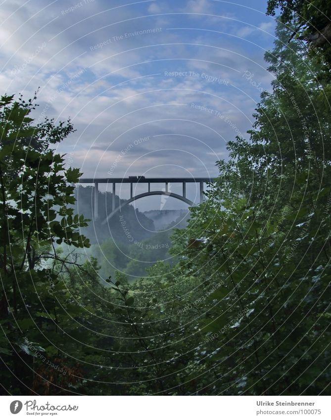 Autobahnbrücke A81 bei Rottweil Farbfoto Außenaufnahme Textfreiraum oben Morgen Ferien & Urlaub & Reisen Sommer Landschaft Pflanze Wolken Nebel Schlucht Brücke