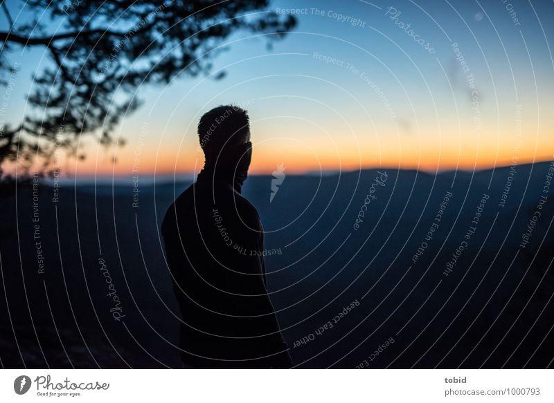 Weitblick Natur Landschaft Pflanze Himmel Wolkenloser Himmel Horizont Sonnenaufgang Sonnenuntergang Wetter Schönes Wetter Baum Wald Hügel Berge u. Gebirge Blick