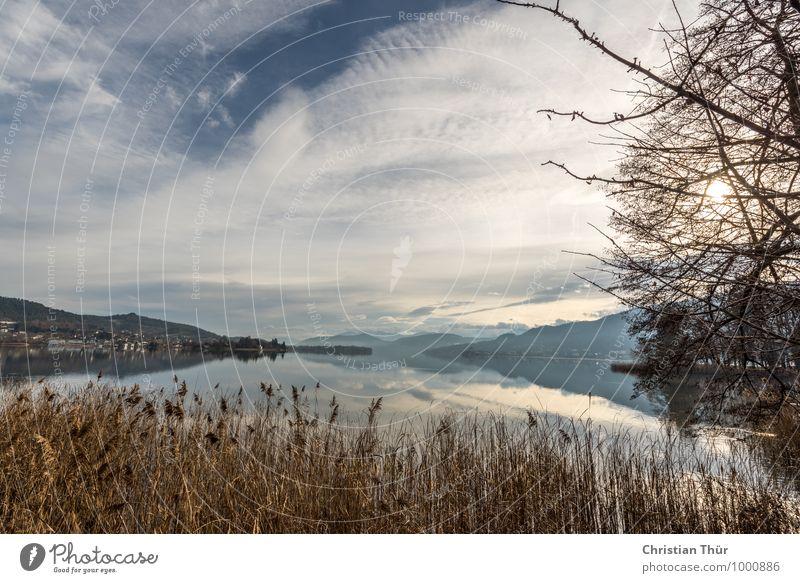 Weitblick Natur Ferien & Urlaub & Reisen Baum Erholung ruhig Ferne Winter Berge u. Gebirge Wiese Gras Schwimmen & Baden See Zufriedenheit Tourismus wandern