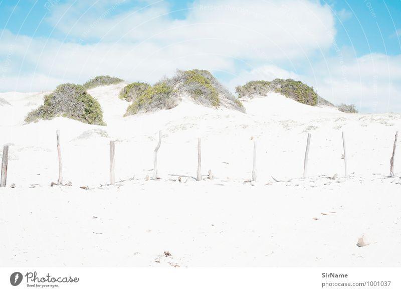 296 [zaun am falschen ort] Himmel Natur Ferien & Urlaub & Reisen Pflanze Sommer Sonne Landschaft Strand Ferne Küste Freiheit Sand groß Ausflug Schönes Wetter