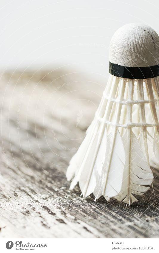 2015 'mal wieder sportlich sein .... Freizeit & Hobby Federball Badminton Sport Ballsport Sportgerät Holzbrett Balken Spielen hell kaputt retro braun grau