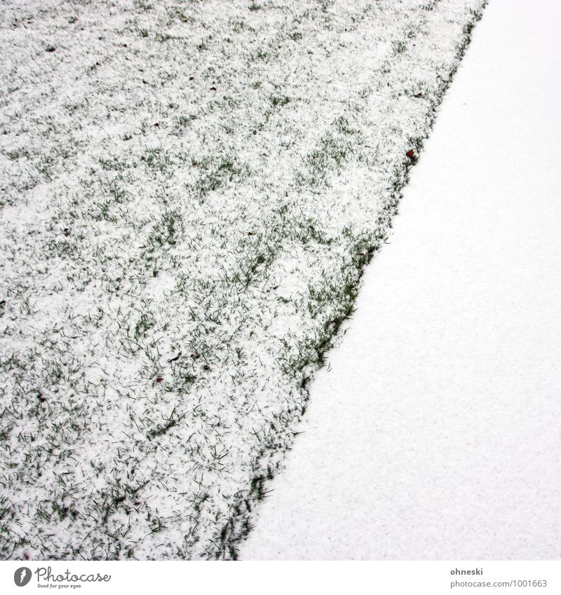 Whiteout weiß kalt Wiese Schnee Garten Eis Erde Urelemente Frost