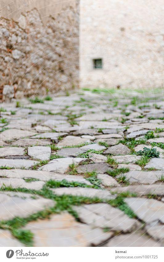 Stein um Stein um Stein Städtereise Toskana Italien Gras Stadt Altstadt Menschenleer Haus Bauwerk Gebäude Mauer Wand Fassade Straße Wege & Pfade alt