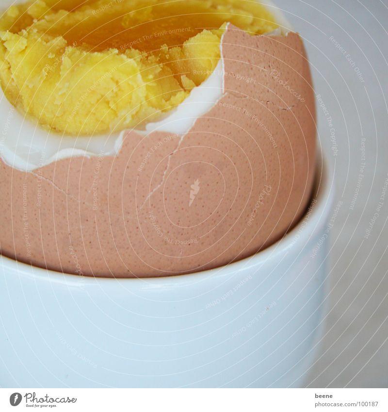 Ei zum Frühstück weiß gelb Ernährung braun Gesundheit kaputt Kochen & Garen & Backen Schalen & Schüsseln Haushuhn Eigelb Eierschale Eiklar Eierbecher