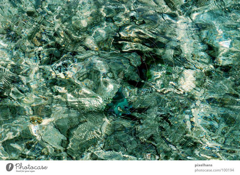 Kaltes - Klares - Wasser Meer Riff Fisch nass durchsichtig Meerwasser Malediven Klarheit Licht Wasseroberfläche Wasserspiegelung Hintergrundbild Kräusel
