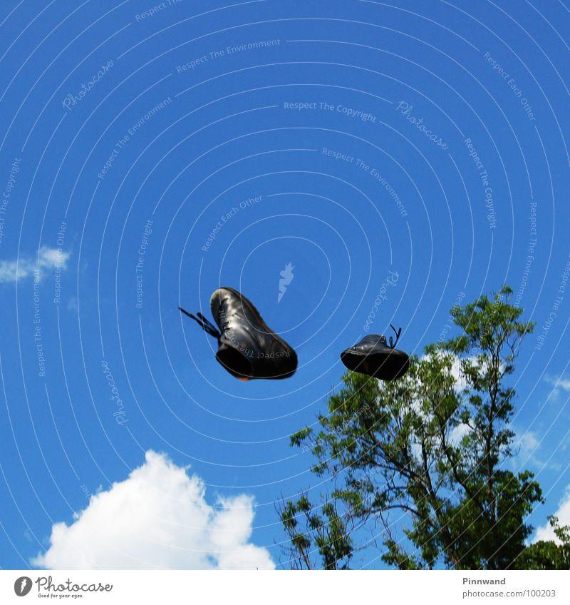 Wunderschuhe zeigen was sie können Himmel Freude Gras Freiheit Vogel glänzend Zufriedenheit Luftverkehr Erfolg Schuhe Geschwindigkeit gefährlich Schönes Wetter