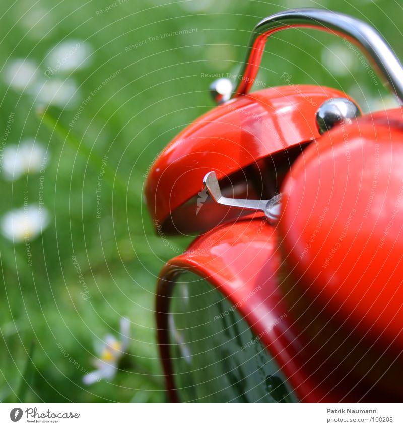 draussen im Gras Wecker rot Wiese grün Unschärfe Gänseblümchen mehrfarbig Detailaufnahme Außenaufnahme Bildausschnitt Anschnitt altmodisch analog wecken Zeit