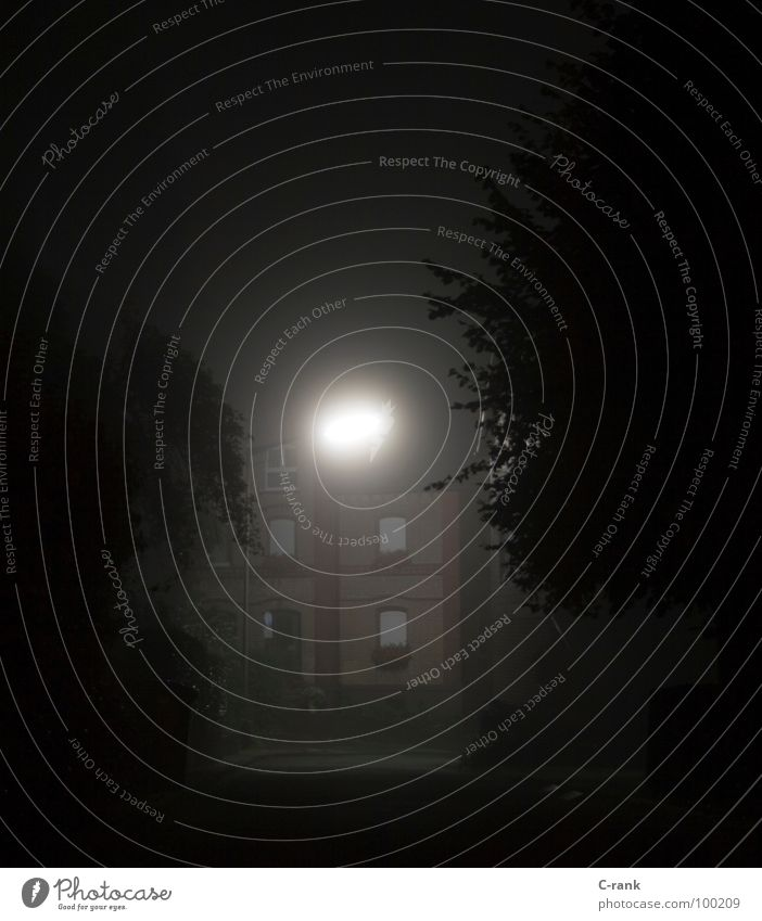 Road to Perdition? Nacht Nebel dunkel Mitternacht Geisterstunde gruselig unsicher kalt eng Außenaufnahme Nachtaufnahme Langzeitbelichtung Angst Panik