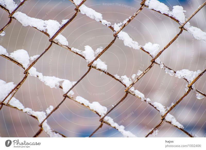 Schnee auf Zaun ruhig Winter Wetter weiß Idylle Schneehaube Gitter Stlileben Jahreszeiten Schneelandschaft Tiefenschörfe wenige Farbfoto Außenaufnahme