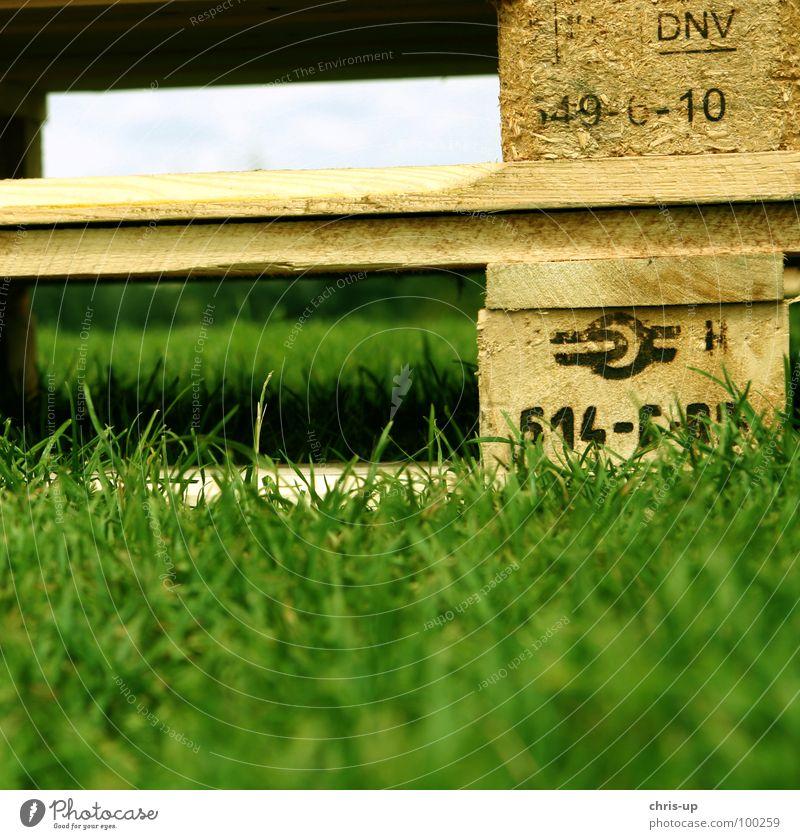 Palette III Paletten Holz Wiese Lastwagen beschriften Gabelstapler Spedition Hubwagen Nagel Gewicht Güterverkehr & Logistik grün Industrie Konzert