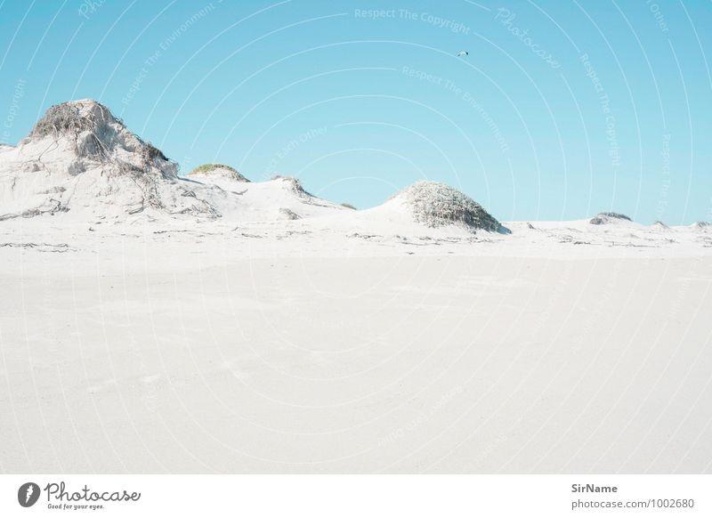 330 Natur Ferien & Urlaub & Reisen blau Sommer Landschaft ruhig Strand Ferne Umwelt Freiheit Sand Freizeit & Hobby Idylle ästhetisch Ausflug Schönes Wetter