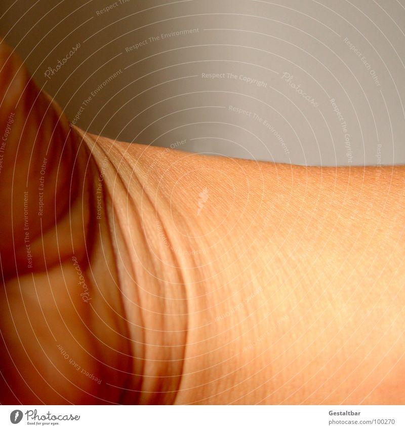 Aufgefaltet. Haut kaputt Falte Anatomie Gelenk Hautfarbe gestaltbar Dermatologie Handballen
