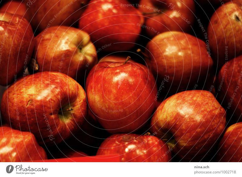 rote Äpfel Natur Gesunde Ernährung Gesundheit Essen Lebensmittel Gesundheitswesen frisch Sauberkeit rund kaufen Apfel Bioprodukte exotisch Frühstück Picknick