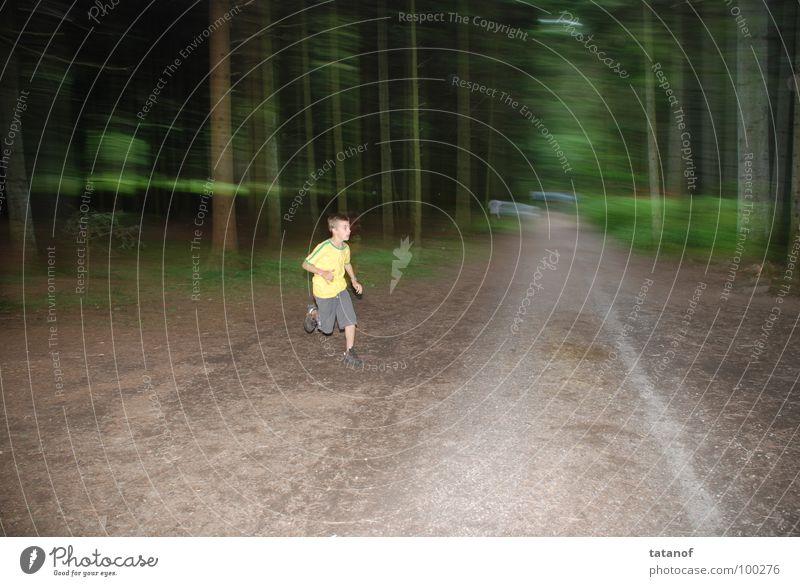 Speed Jugendliche grün Wald gelb Leben Sport Gefühle Spielen Bewegung Wege & Pfade Gesundheit Stimmung braun laufen frei Geschwindigkeit