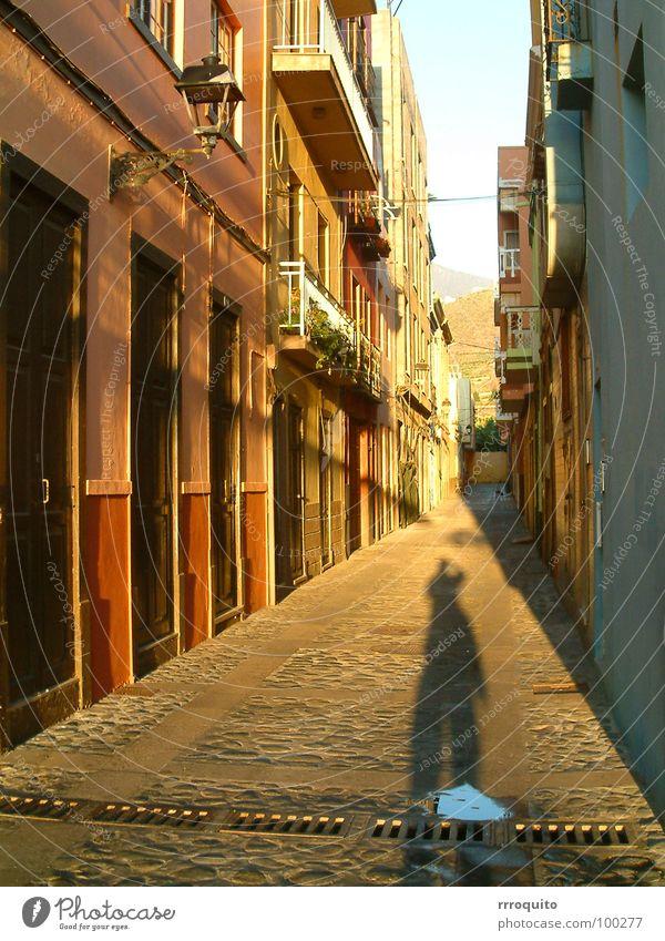 schattenspender Spender Licht Gasse Sonnenuntergang La Palma Verkehrswege Schatten Straße Flucht