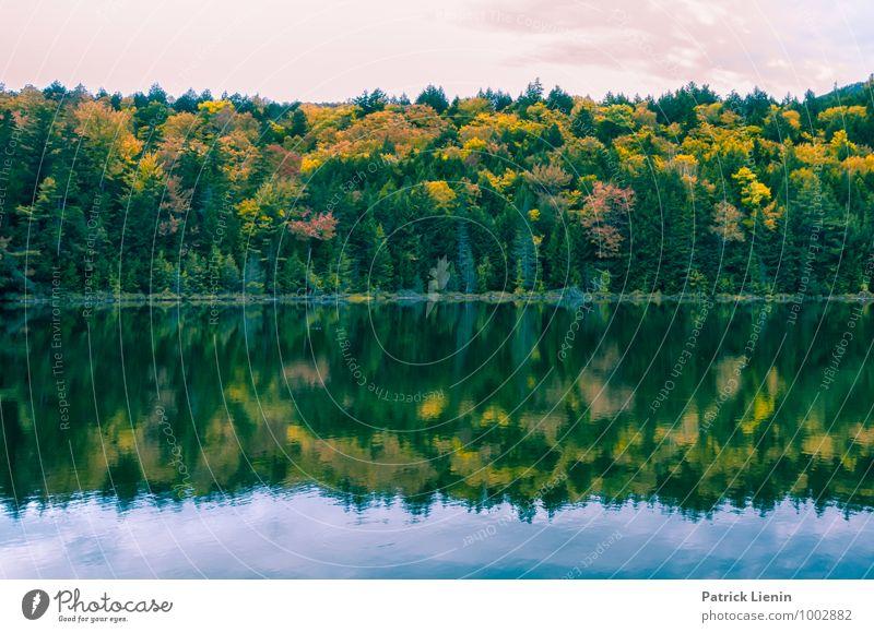 Herbstspiegel Himmel Natur Ferien & Urlaub & Reisen Pflanze Baum Erholung Landschaft Umwelt Leben Freiheit See Zufriedenheit Wetter Tourismus Kraft