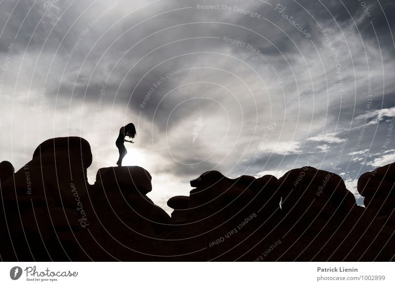 Schattenspielerin (3) Lifestyle elegant Stil Gesundheit Leben harmonisch Wohlgefühl Zufriedenheit Sinnesorgane Erholung Freizeit & Hobby