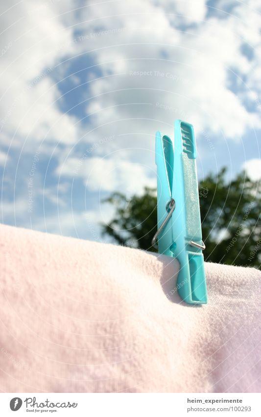 3-Wetter-Haft! Sommer Wäscheklammern Frühling Wolken trocknen trocken Klammer Bekleidung rosa Sonnenstrahlen Haushalt Himmel Wind blau Wäsche waschen Waschtag