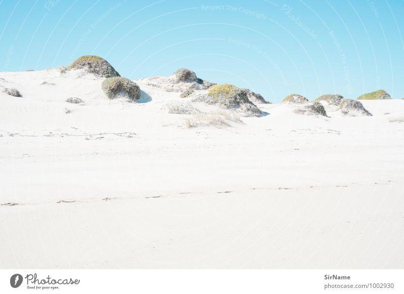 307 [surreale landschaft] Sommer Strand wandern Umwelt Natur Landschaft Sand Wolkenloser Himmel Schönes Wetter Wärme Gras Sträucher Hügel Küste ästhetisch