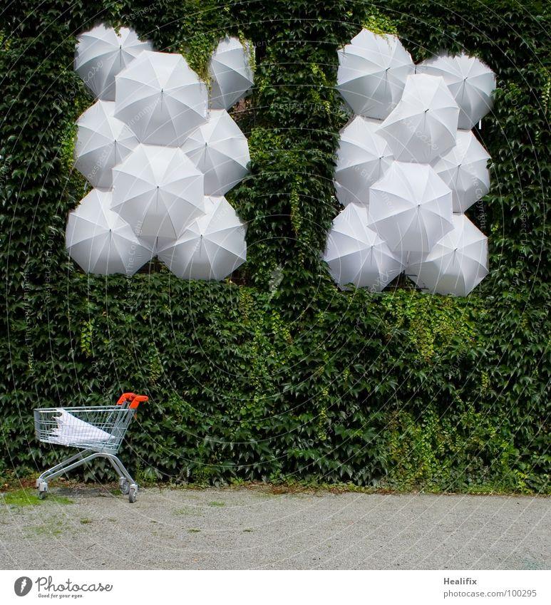 RESTEKISTE weiß grün Sand Kunst kaufen Kultur Vergänglichkeit Regenschirm Hecke Rest vergessen Gitter Einkaufswagen Efeu Kunsthandwerk