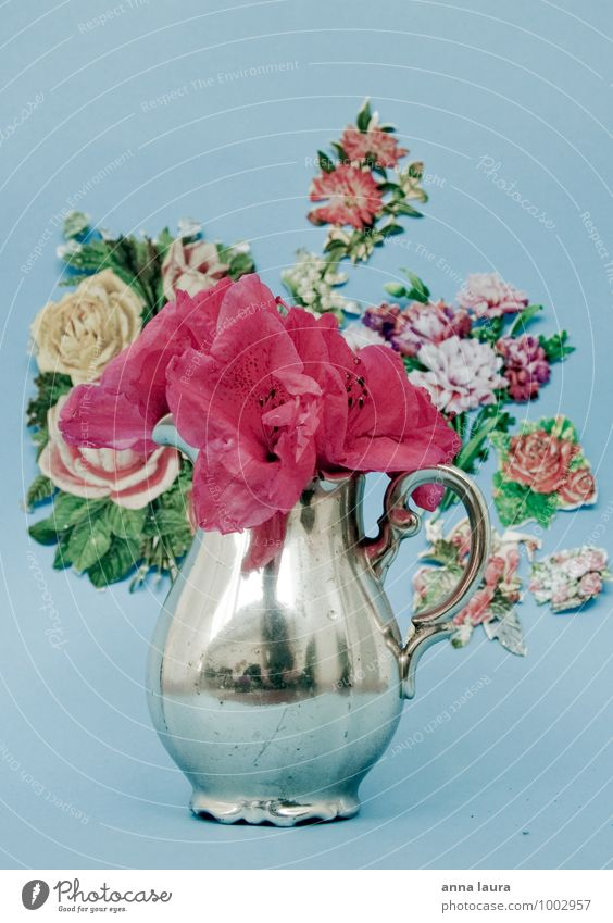 blumenstillleben Natur blau Pflanze Blume rosa Dekoration & Verzierung ästhetisch Kitsch Blumenstrauß silber altehrwürdig verblüht Krimskrams
