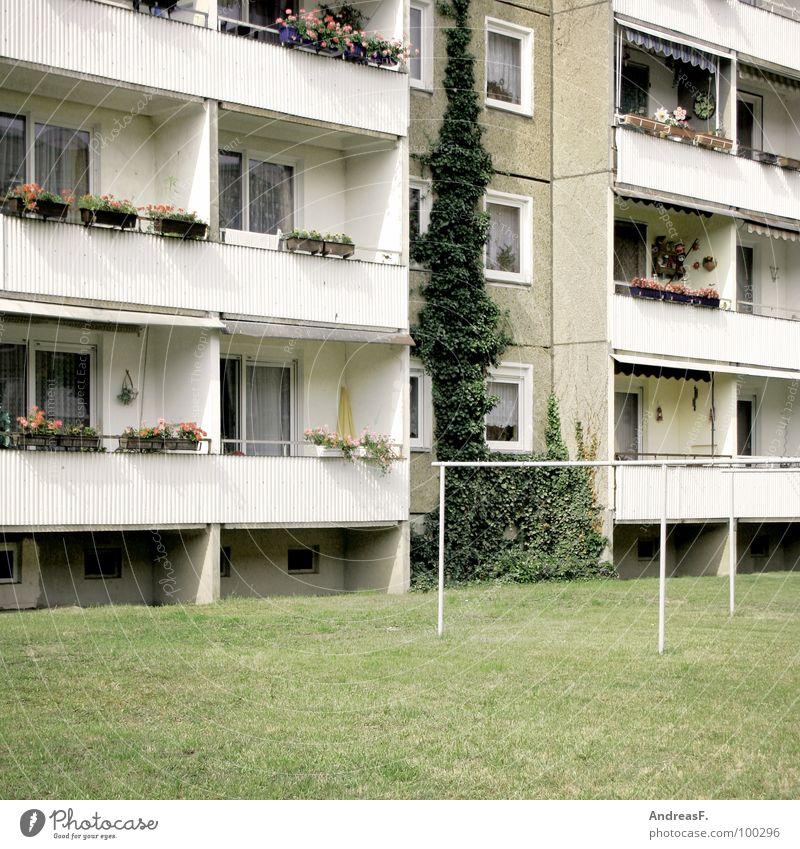 Platte Haus Wiese Fenster grau Arme Wohnung Armut trist Rasen Häusliches Leben Balkon DDR Miete Osten sozial Block
