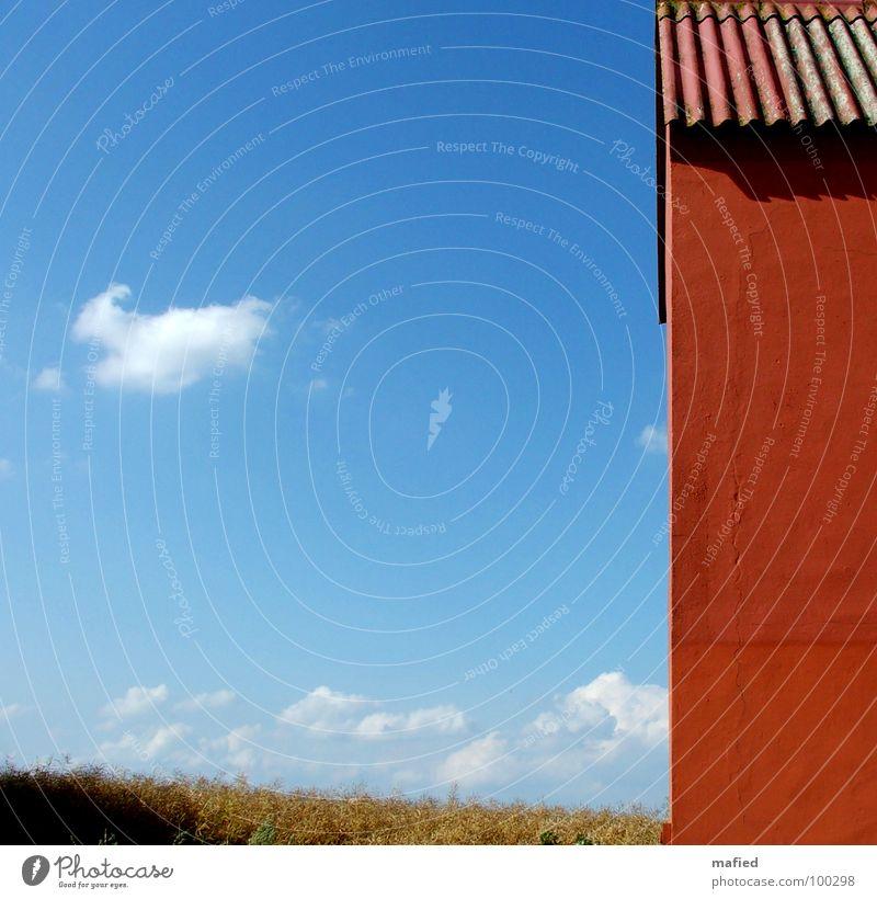 There's a red house over yonder 2 Haus rot Wand Wolken Feld Wellblech Raps Putz Riss Sommer ruhig Himmel blau alt orange Ochsenblut Klarheit Ferne
