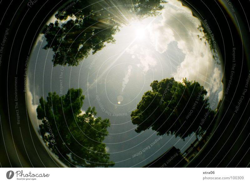juhuuuuu! lomo! Baum Baumkrone grün Wolken hell-blau 3 Haus Sommer rund Fischauge Planet Sonnenstrahlen Lomografie Himmel Kreis Kugel Erde Beleuchtung