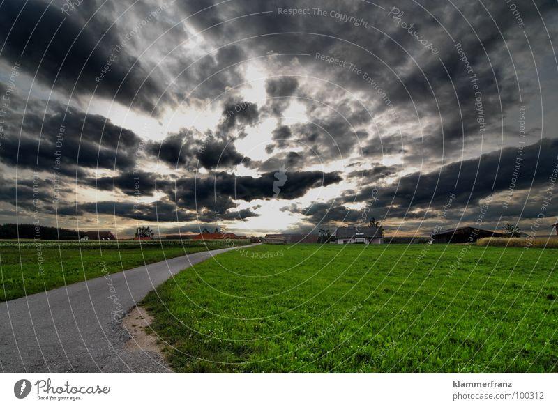 Riecht ihr es auch? Kühlung Feld Wolken Regenwolken Physik Hoffnung Gras Horizont Himmel schlechtes Wetter dunkel Angst ungewiss Gewitterwolken ruhig Einsamkeit