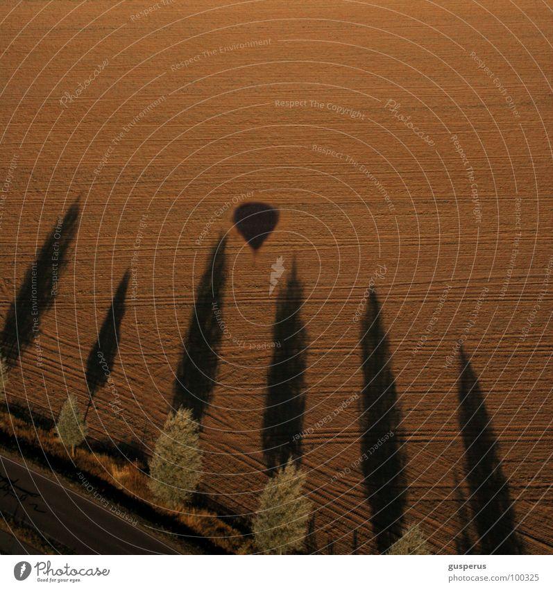 alles gute {...} Natur Baum oben Wärme Luft Feld Flugzeug Luftverkehr Niveau Physik Ballone Allee Geothermik Heisse Quellen Ton-in-Ton