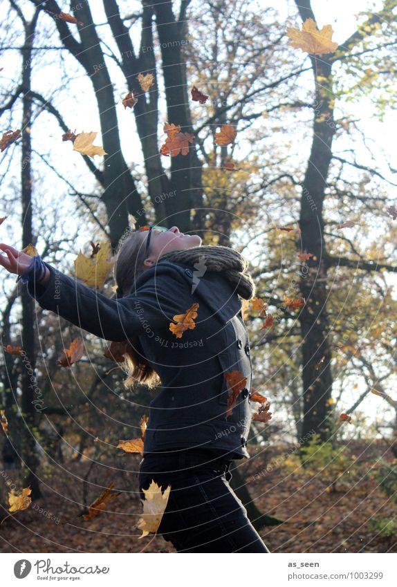 Yipieh! Mensch Kind Natur Jugendliche Pflanze Sonne Baum Landschaft Blatt Freude Umwelt Leben Herbst Gefühle Bewegung feminin