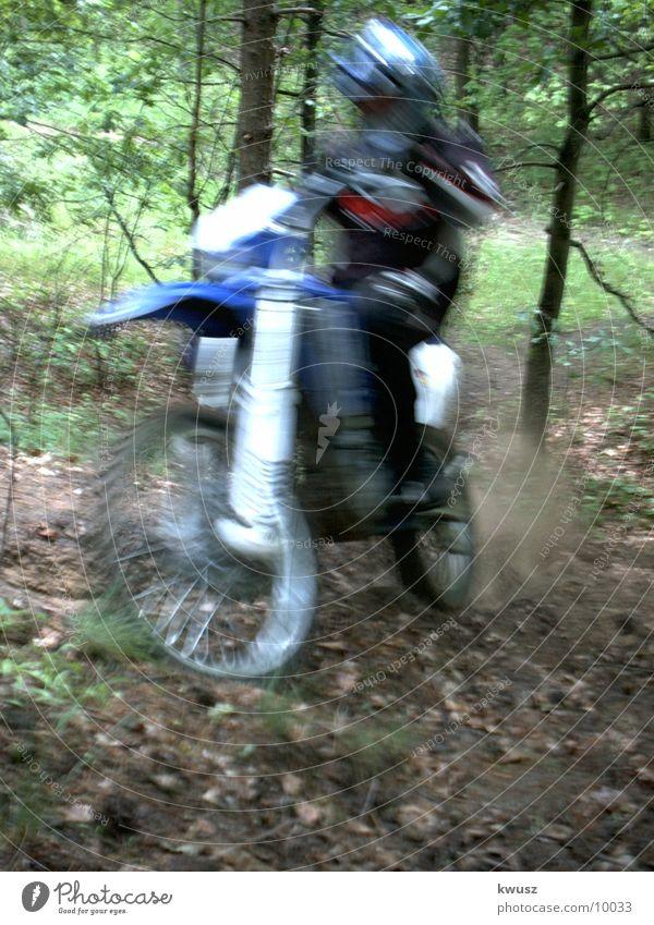 Speed im Wald grün blau Geschwindigkeit Motorrad Motorsport