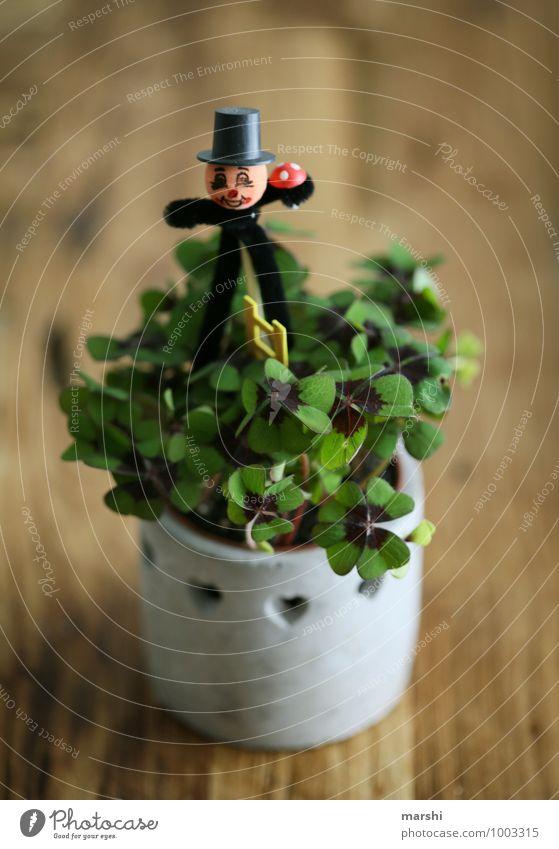 Glücksklee Pflanze Zeichen Gefühle Stimmung Klee Kleeblatt Schornsteinfeger Holztisch Symbole & Metaphern Silvester u. Neujahr Wunsch Glücksbringer Farbfoto