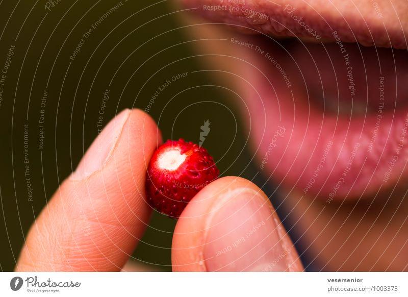 ooooh- rein damit! Frucht Mund Lippen 1 Mensch Essen genießen lecker süß Vorfreude Lust Sinnesorgane walderdbeere Erdbeeren Farbfoto Außenaufnahme Nahaufnahme