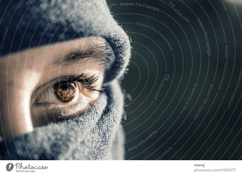 natürlich | Jugendliche Schönheit Mensch feminin Junge Frau Gesicht Auge Wimpern Augenbraue Regenbogenhaut Freundlichkeit schön verpackt Farbfoto