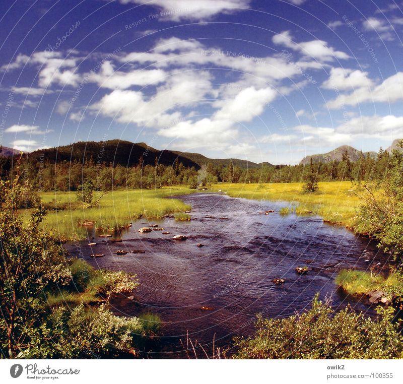 Weit draußen Himmel Natur Ferien & Urlaub & Reisen Pflanze Wasser Erholung Landschaft Wolken Ferne Wald Berge u. Gebirge Umwelt Freiheit Horizont Tourismus
