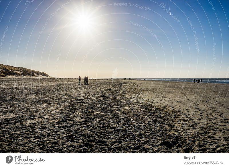 the arrival Umwelt Natur Landschaft Sand Himmel Wolkenloser Himmel Sonne Sonnenlicht Winter Wetter Schönes Wetter Küste Strand Nordsee wandern Unendlichkeit