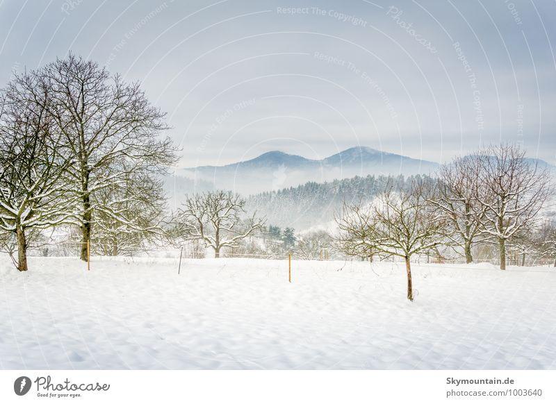 Winterlandschaft mit Merkur (Berg bei Baden-Baden) Natur Ferien & Urlaub & Reisen Erholung Landschaft Wolken ruhig Freude Ferne Berge u. Gebirge Leben Schnee