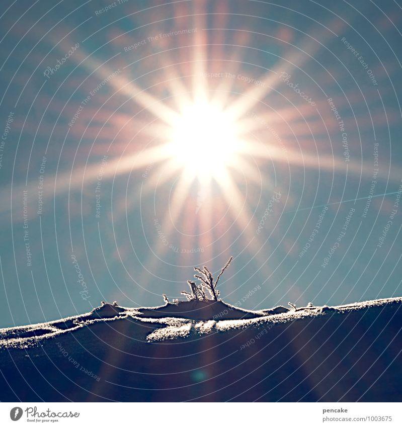 außergewöhnlich | tagfeuerwerk Natur Landschaft Urelemente Himmel Sonne Winter Schönes Wetter Schnee Discokugel Zeichen fantastisch gigantisch glänzend