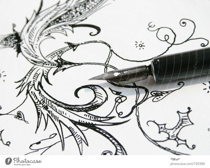 Schnörkel II weiß Blume schwarz Papier Feder Bild zeichnen gemalt Schatten Pflanze Schnörkel Tusche gezeichnet