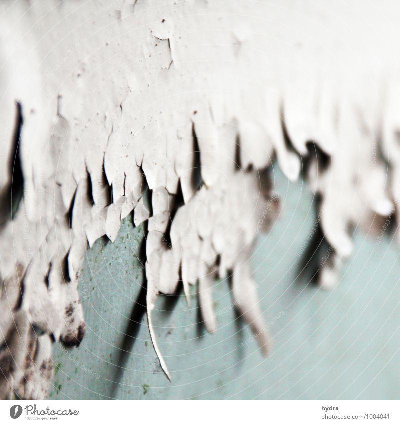 marode alt blau Farbe weiß Haus dunkel Wand Traurigkeit Farbstoff Mauer Zeit Fassade trist Beton kaputt Baustelle
