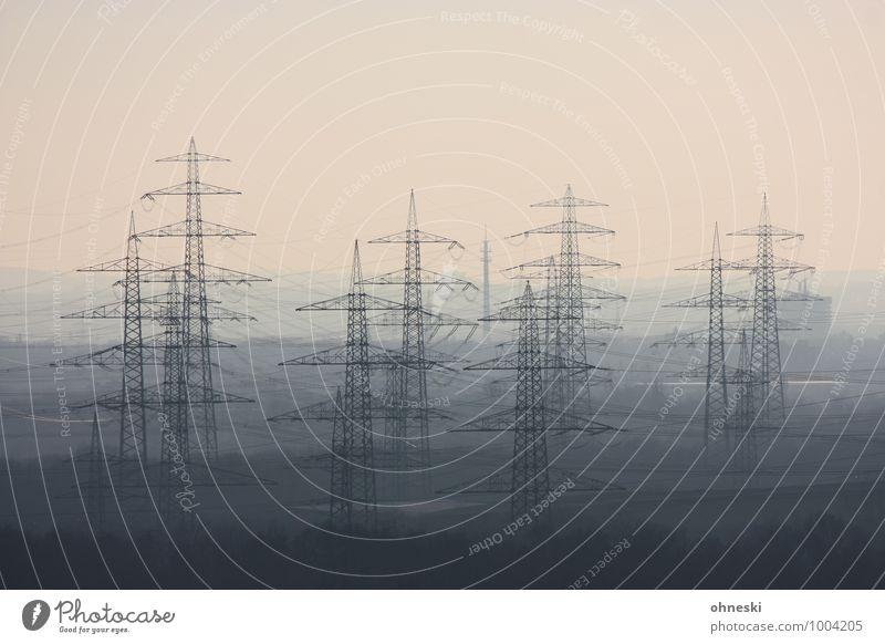 Energiewirtschaft Fortschritt Zukunft Erneuerbare Energie Strommast Umwelt Umweltverschmutzung Wachstum Farbfoto Gedeckte Farben Außenaufnahme Menschenleer