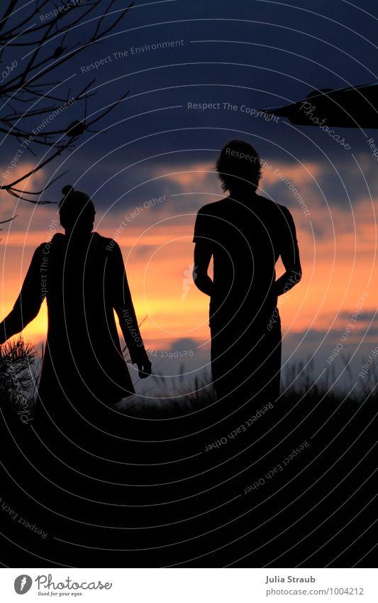 Gute Nacht maskulin feminin Frau Erwachsene Mann Paar Partner 2 Mensch 18-30 Jahre Jugendliche Wolken Sonnenaufgang Sonnenuntergang Gras Sträucher Wiese stehen