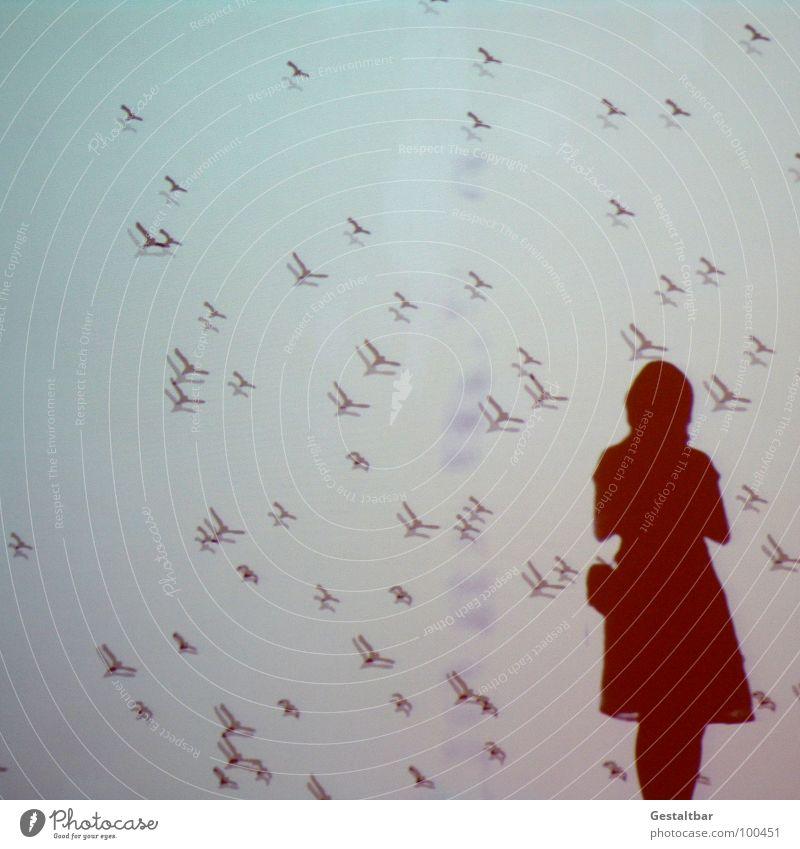 Schattenspiel 01 Vogel Frau feminin Silhouette frei geheimnisvoll In sich gekehrt Denken Tasche Porträt Aussicht Gute Laune gestaltbar Ausstellung